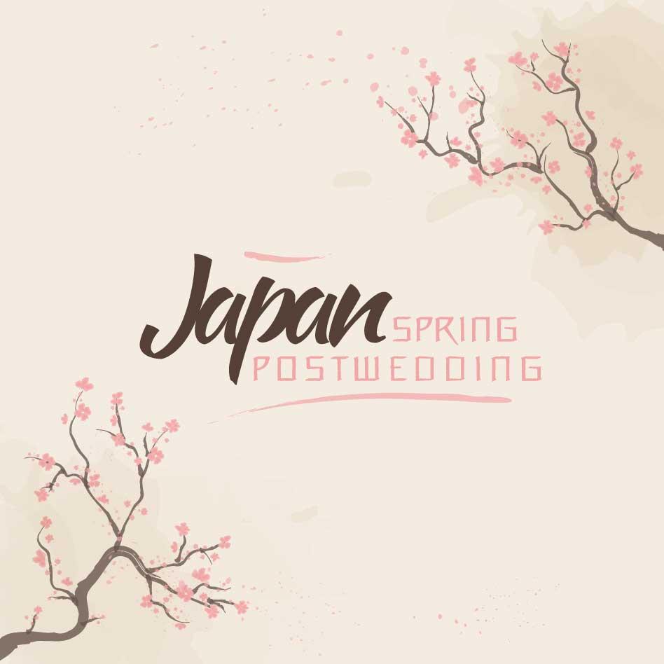 Japan Post Wedding